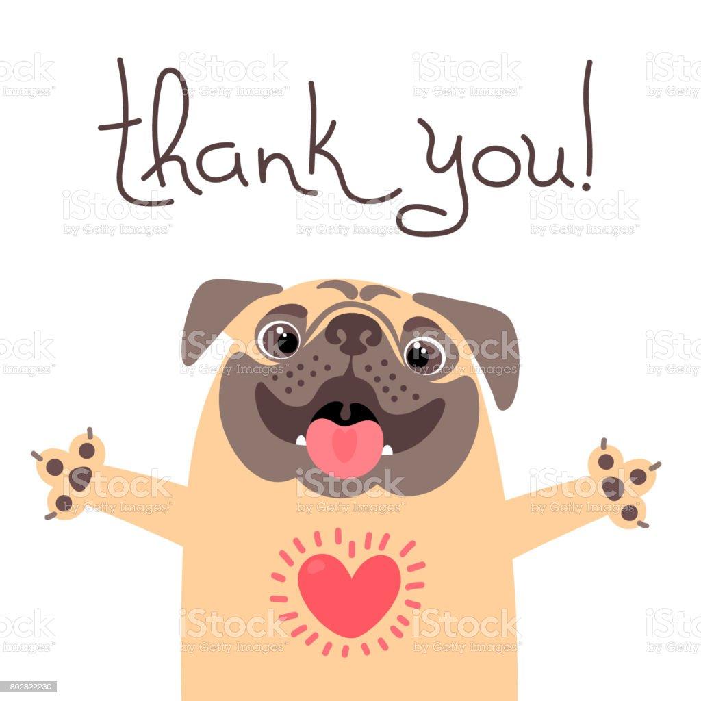 かわいい犬はありがとうを言います感謝でいっぱい心とパグします - thank