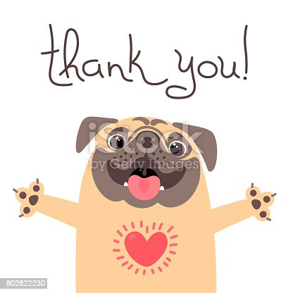 istock Cute dog says thank you. Pug with heart full of gratitude 802822230