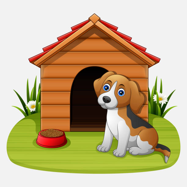 cute dog sitting in front of kennel - square foot garden stock illustrations, clip art, cartoons, & icons