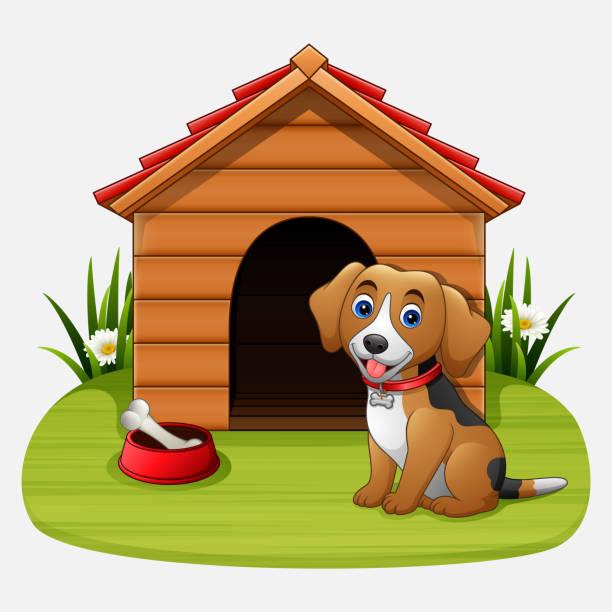 Best Dog House Backyard Illustrations Royalty Free Vector
