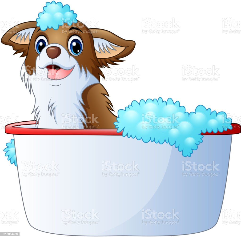 Cute dog taking a bath on a white background vector art illustration
