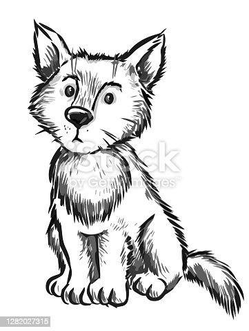istock cute dog 1282027315