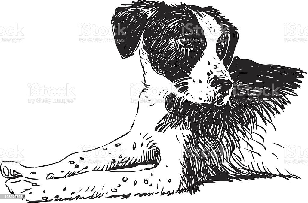 cute dog vector art illustration