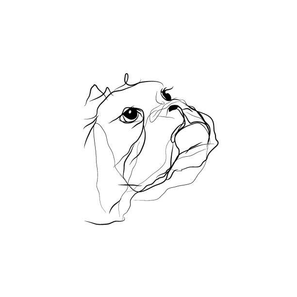 cute dog,minimalist style vector illustration vector art illustration