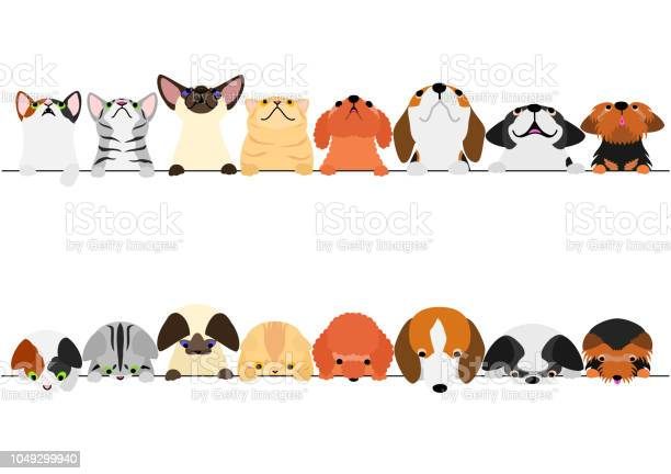 Cute dogs and cats looking up and down border set vector id1049299940?b=1&k=6&m=1049299940&s=612x612&h=iln5izwgktvwivs3vcmnaqxud7jv7onxzhtswh2805e=