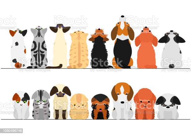 Cute dogs and cats looking up and down border set vector id1050495746?b=1&k=6&m=1050495746&s=612x612&h=o dmintbemzb mdt eoyz54oh9eh1ktlpxwncotvdls=