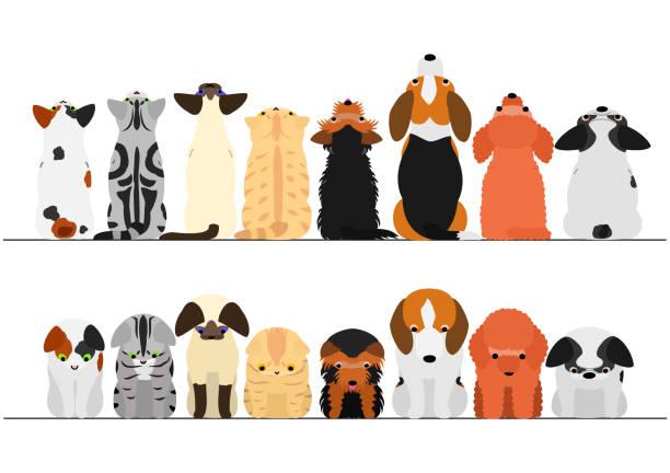 かわいい犬や猫が振り向き、罫線を設定 ベクターアートイラスト