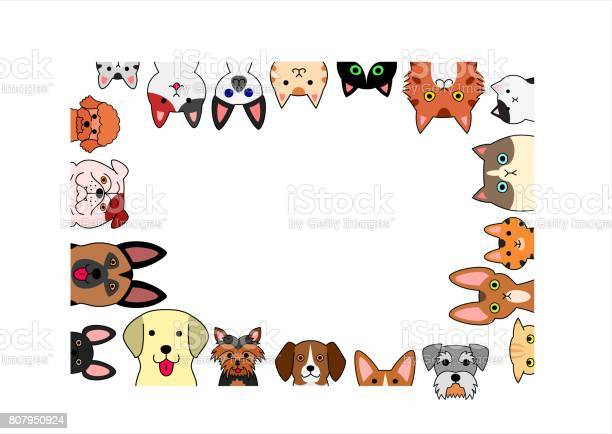Cute dogs and cats rectangle frame vector id807950924?b=1&k=6&m=807950924&s=612x612&h=zybryesbs8zzxee9xtlvkgjldeqymybm8xoosndlhas=