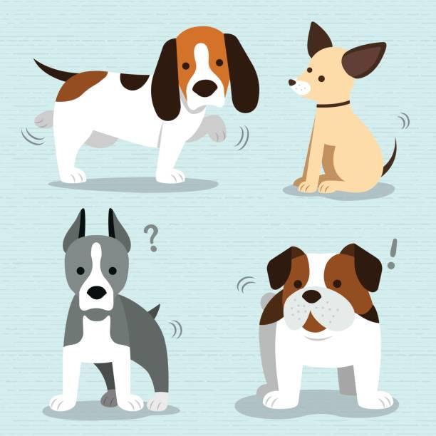 süße hunde züchten vektor - hundebetten stock-grafiken, -clipart, -cartoons und -symbole