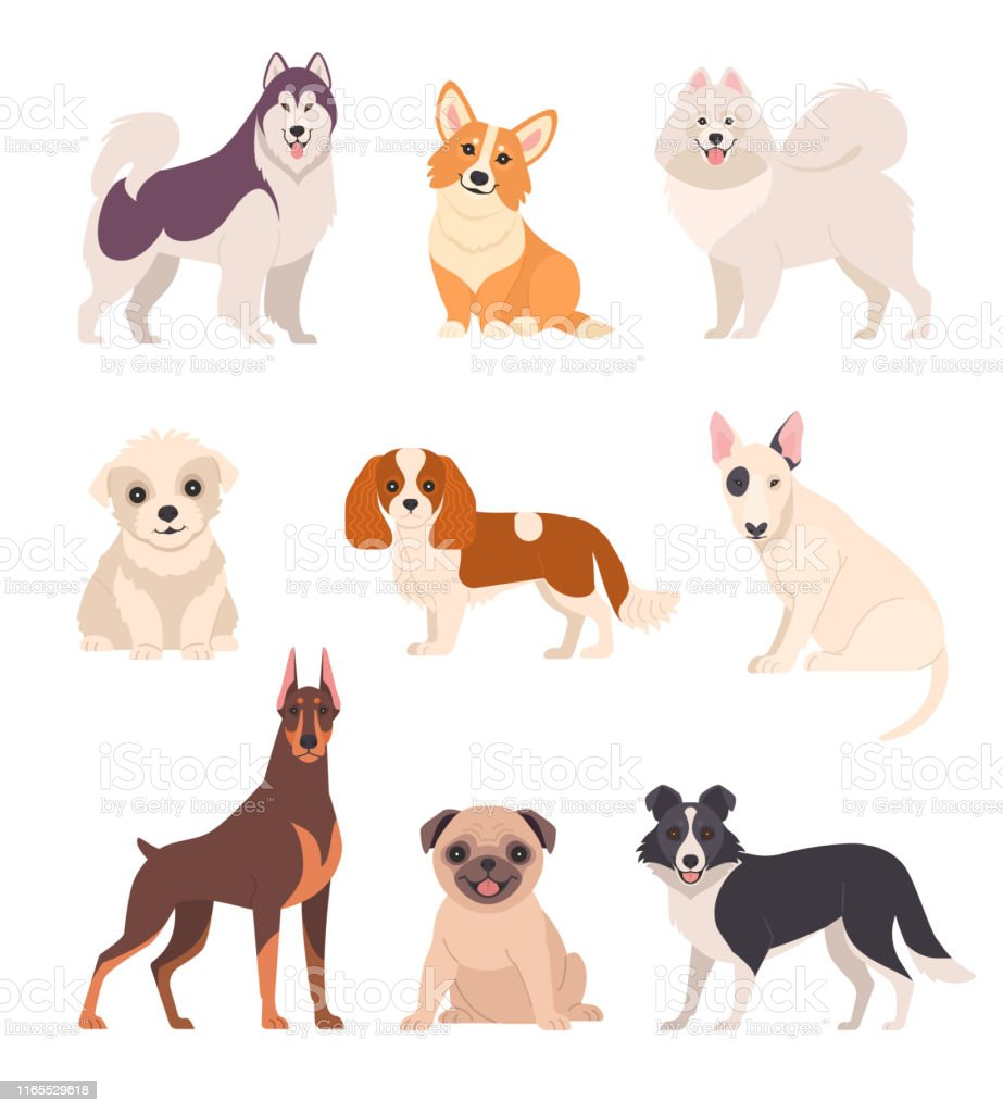 Cute Dogs Collection Stock Illustration Download Image Now Istock