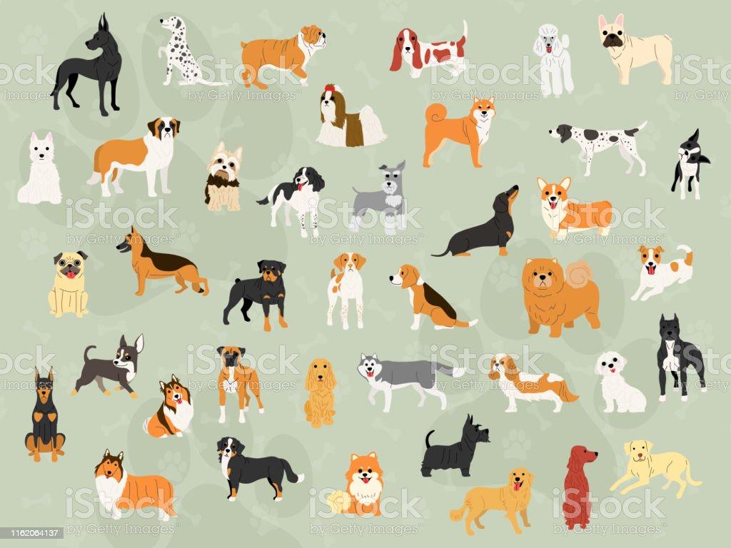 アクション壁紙デザインでかわいい犬 イラストレーションのベクター