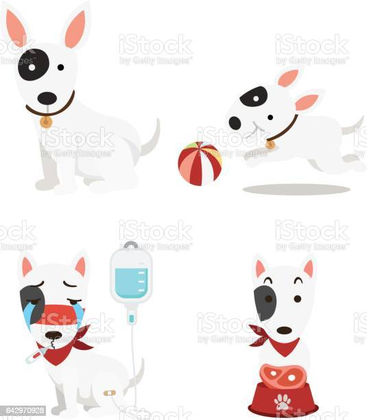 Cute dogs set on white background vector id642970928?b=1&k=6&m=642970928&s=612x612&h=bq4tbvhhxuyyhfin5wiretzrzoojsxoth1bw6fpodgg=