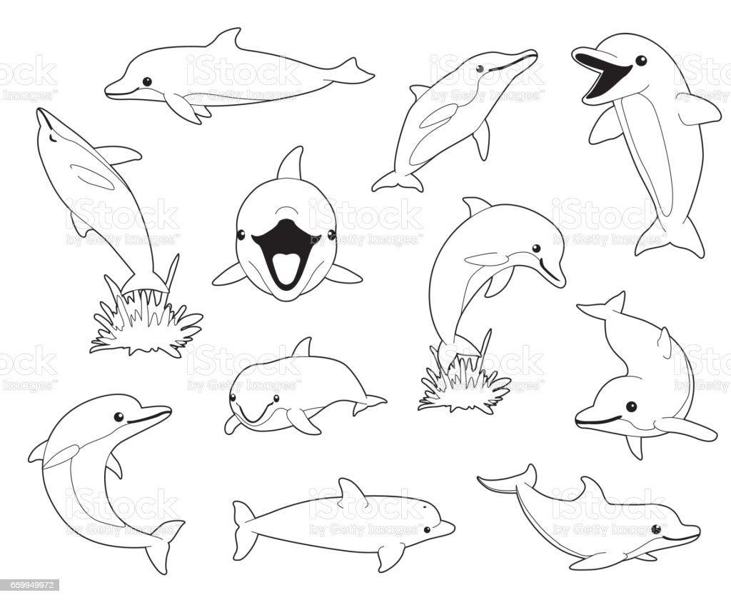 Cute Dolphin Coloring Book Cartoon Vector Illustration Stock Vector ...