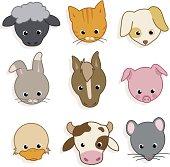 Nine cute domestic animals' faces!