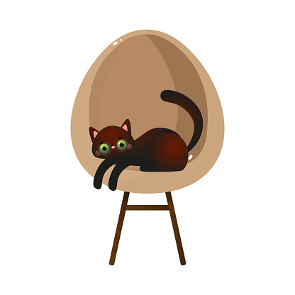 Cute domestic black cat character lying on a design cream chair. Vector illustration in flat cartoon style