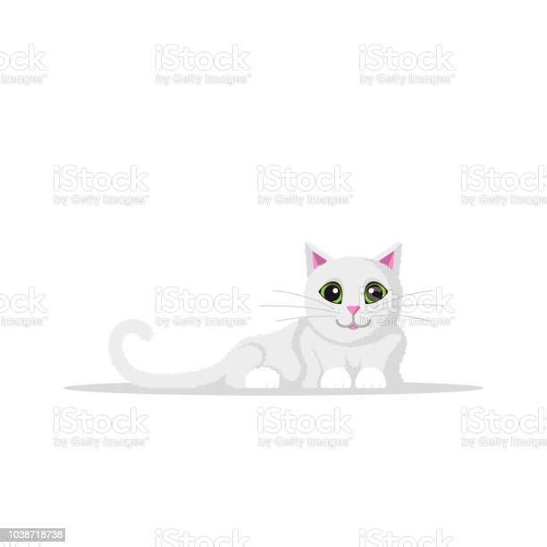 Cute domestic cat vector id1038718738?b=1&k=6&m=1038718738&s=612x612&h=uwbnnamkufeuwsbtdou0ptmqhcqsikzhlbj8xuf2x24=