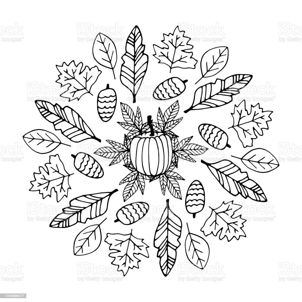 Süße Doodle Herbst Mandala Mit Blättern Zapfen Und Kürbisse Auf