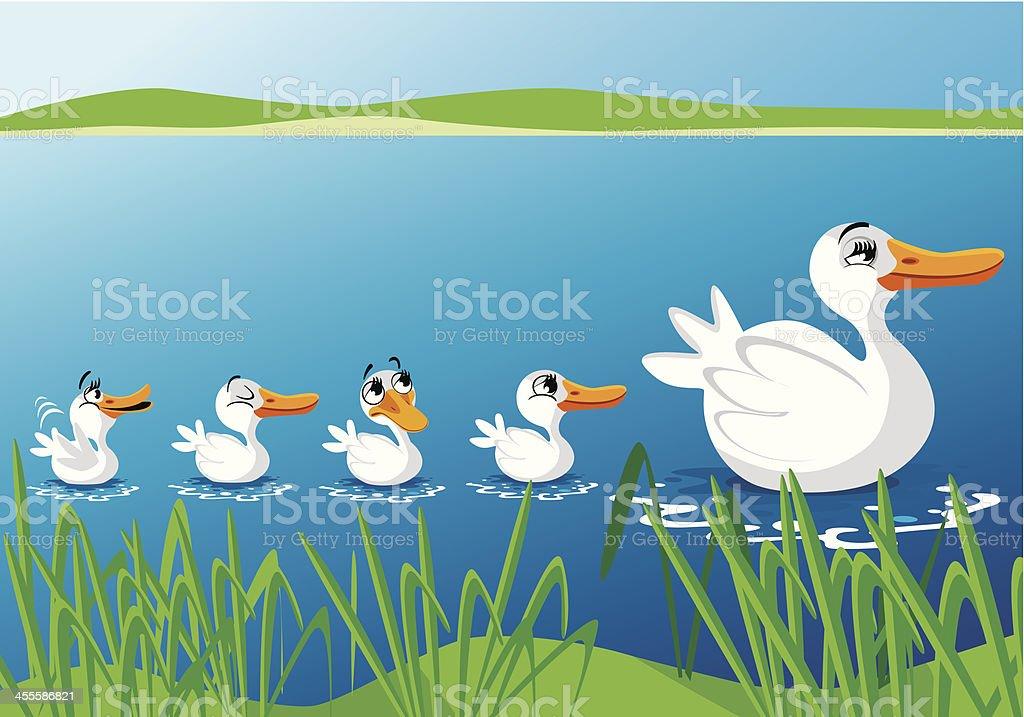 Cute ducks vector art illustration