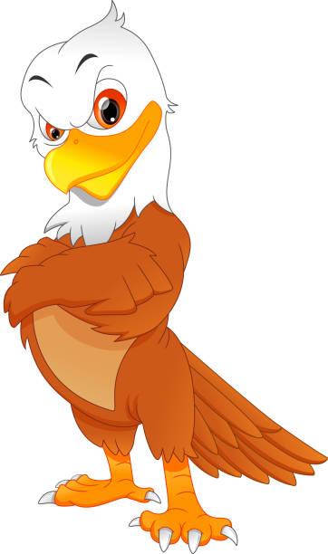 Best Cartoon Funny Eagle Presenting Illustrations, Royalty ...