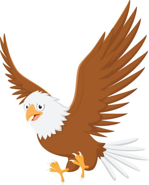 Eagle Funny Illustrations, Royalty-Free Vector Graphics ...