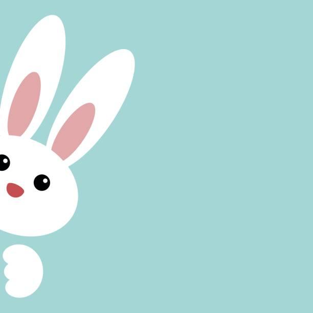 cute easter bunny - rabbit animal stock illustrations