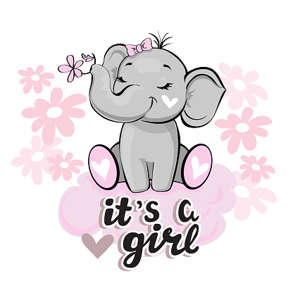 Cute elephant with a pink flower on a white background and the inscription it's a girl. Vector illustration for children