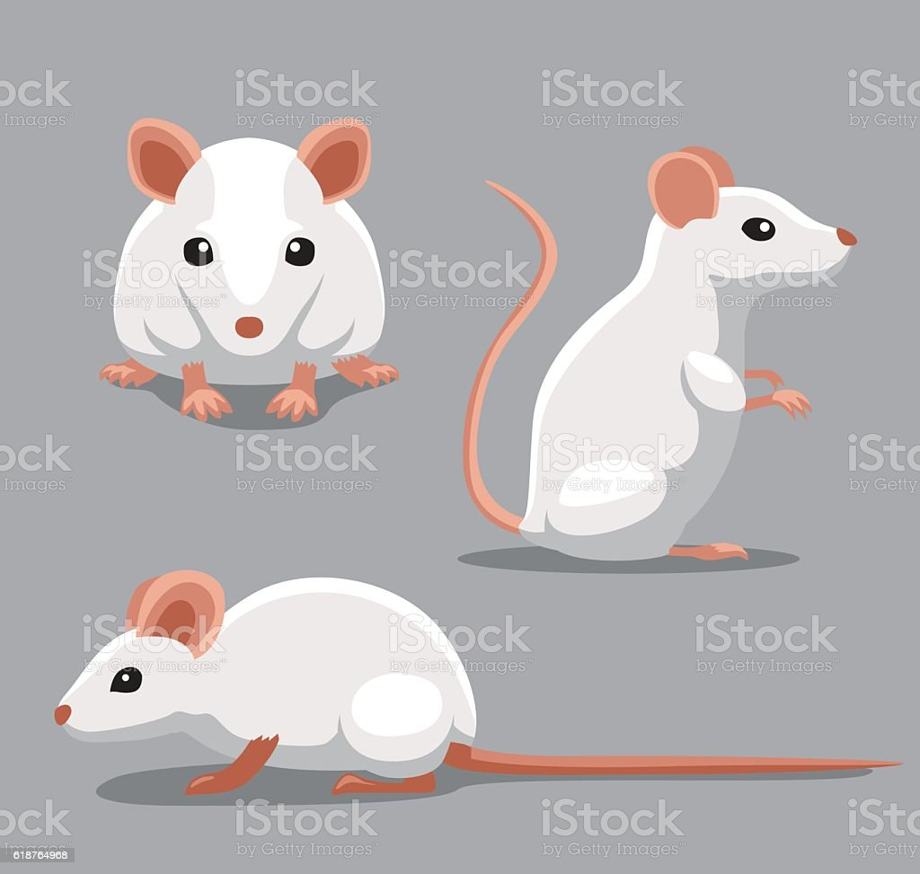 Cute Fancy Mouse Poses Cartoon Vector Illustration Animal Character EPS10 File Format Albino stock vector