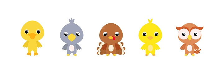 Cute farm baby birds in cartoon style. Collection animals characters for kids cards, baby shower, birthday invitation, house interior. Bright colored childish vector illustration.