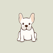 Cute fawn color Frenchie sitting