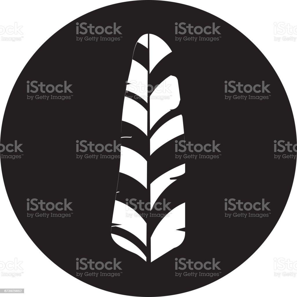 cute feather decorative icon cute feather decorative icon - arte vetorial de stock e mais imagens de arte royalty-free