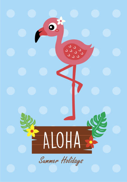 süße Flamingo Vogel Aloha Poster Vektor – Vektorgrafik