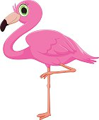 cute flamingo cartoon