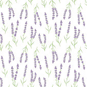 Cute floral lavenders seamless repeat pattern background vector.