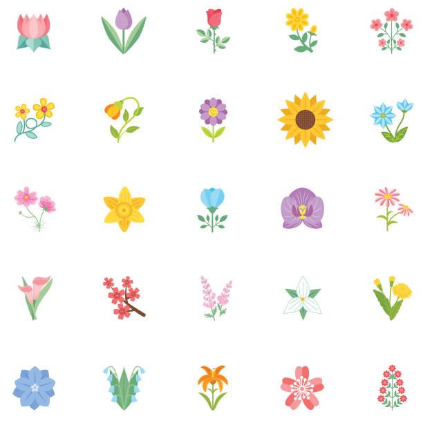 Cute Flower Icon In Flat Design - Sunflower Simple flower icon in flat design style isolated on white. flowers stock illustrations