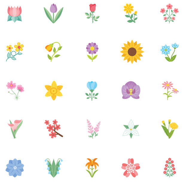 illustrazioni stock, clip art, cartoni animati e icone di tendenza di cute flower icon in flat design - sunflower - fiori