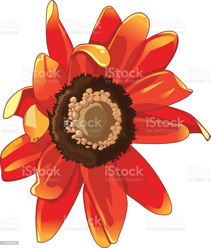 Cute flower royalty-free cute flower stock vector art & more images of beauty in nature