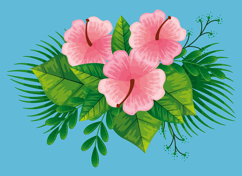 Cute Flowers Pink Color With Branches And Tropical Leafs Stock Illustration Download Image Now Istock