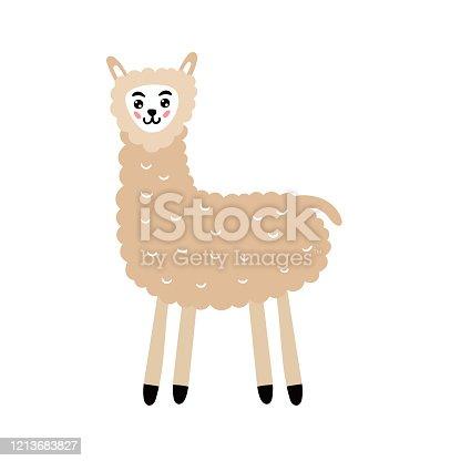 Cute fluffy llama