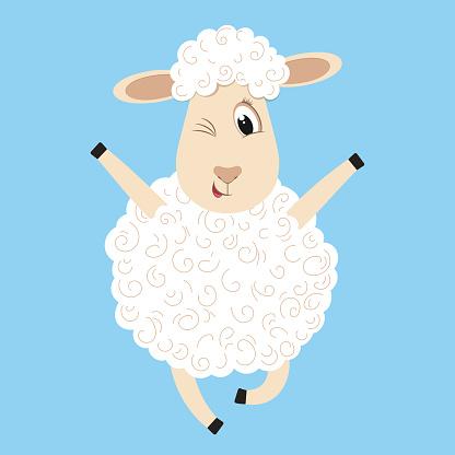 Cute fluffy sheep