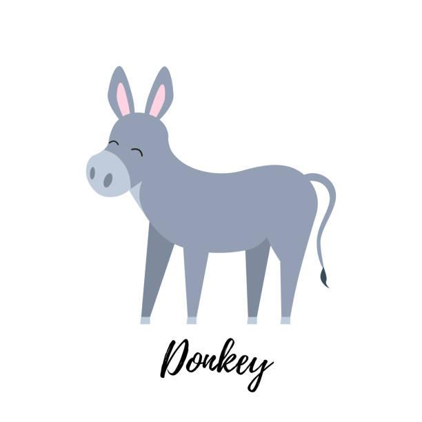 Cute foal isolated. Domestic donkey kid vector illustration vector art illustration