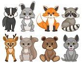 Cute forest animals isolated on a white background.