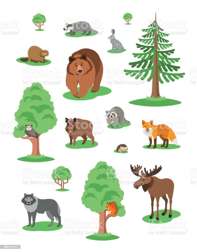 Cute Forest Animals Kids Cartoon Illustration Stock Illustration Download Image Now Istock