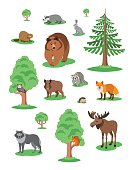 Cute smiling forest animals vector cartoon illustration. Wild zoo mammals icons for kids book. Bear, fox, owl, hedgehog, squirrel, wolf, elk, raccoon, hare, badger, beaver, boar with green trees