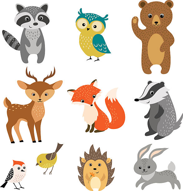 Cute forest animals vector art illustration