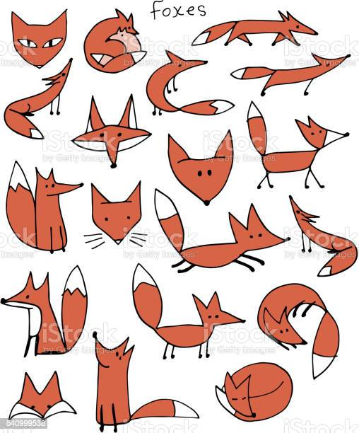 Cute fox sketch collection for your design vector id540999538?b=1&k=6&m=540999538&s=612x612&h=yp4qjstevj7 kjhwjddkn6p6zttq wcttcdbacs8d1q=