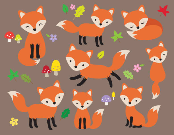 Cute Fox Vector Illustration Cute fox vector illustration in various poses with leaves and flower elements. cute wolf stock illustrations