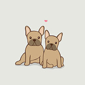Two cute Frenchie dogs