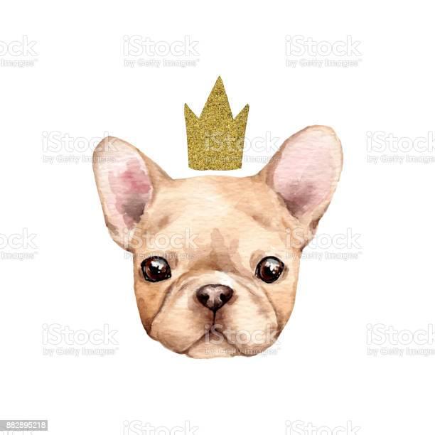 Cute french bulldog vector id882895218?b=1&k=6&m=882895218&s=612x612&h=vgo5mjghd3crlkyfxa4yo1g6lzcb xi9k4fpmbua21u=