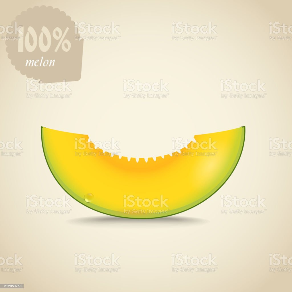 Cute fresh yellow melon illustration vector art illustration