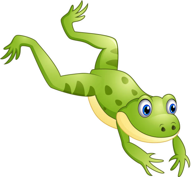 Frog Jumping Clipart Top Frog Jump C...